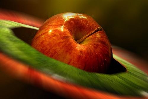 Compote de pommes au babycook