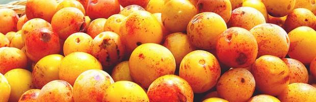 Compote de mirabelles au miel