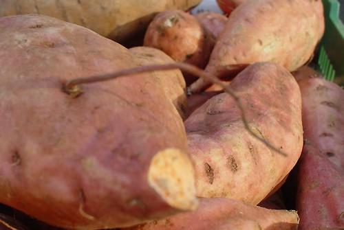 Purée de patates douces au brocolis